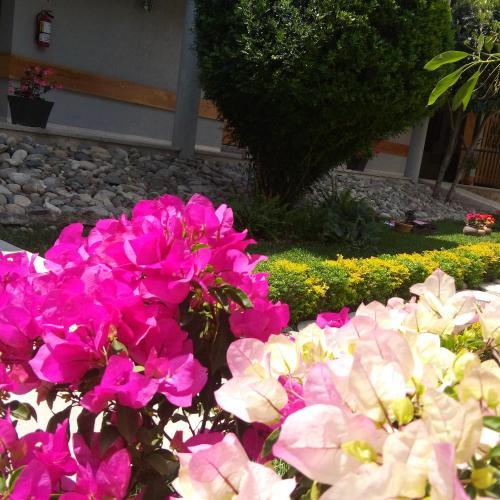 Hotel Casa Caelum Photo