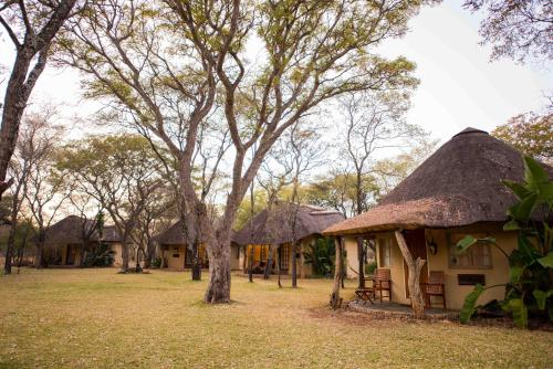 Mziki Safari Lodge Photo