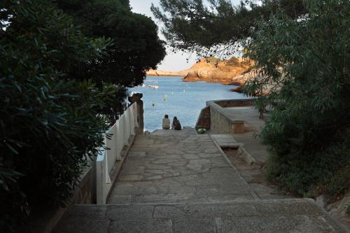 Cala d'Aiguafreda, Begur 17255, Costa Brava, Spain.