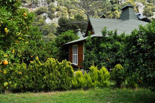 Cıralı Arcadia Villas