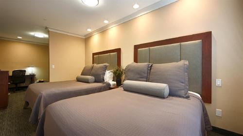 Best Western PLUS Avita Suites Photo