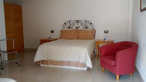 Hotel Ollin Teotl Photo