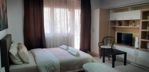https://q-xx.bstatic.com/images/hotel/max500/137/137376804.jpg