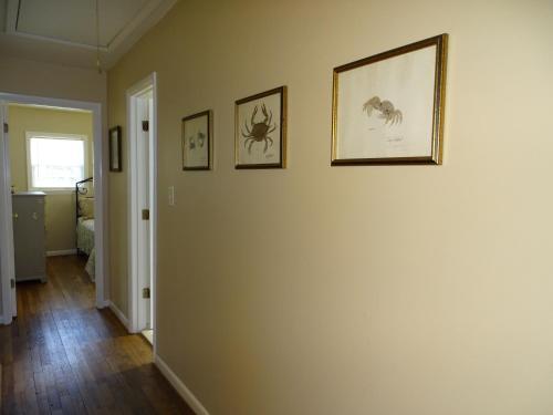 Palmwood Paradise - 3 Bedroom