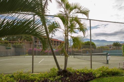 Maui Vista Vacation Condo Photo