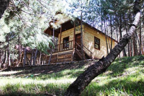 Mengen Çam Pınarı Doğa Evleri rezervasyon