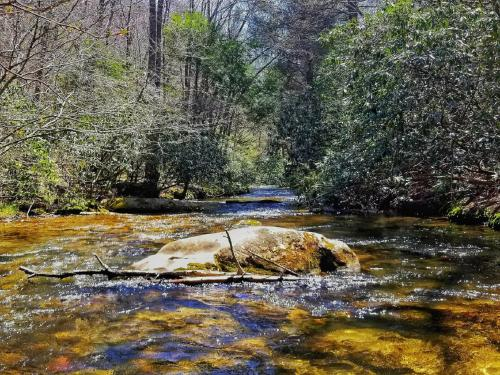 Creekside Memories- Blue Ridge Area - Cherrylog, GA 30522
