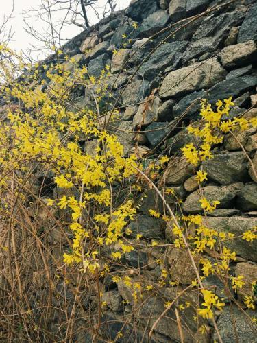 Mutianyu-Great Walls Mountain Guest House photo 8