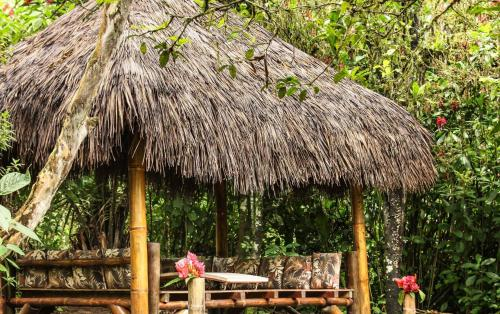 El Abrazo del Arbol - Farm Eco Lodge Photo