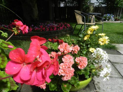 Serenity Bed And Breakfast - Burnaby, BC V5J 2C3