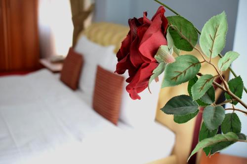 https://q-xx.bstatic.com/images/hotel/max500/142/142259981.jpg