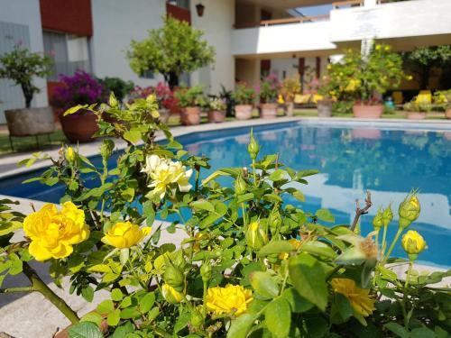 Hotel Isabel Photo