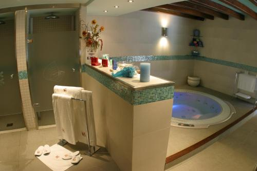 Double or Twin Room with Spa Access Hotel & Spa Casa Irene 8