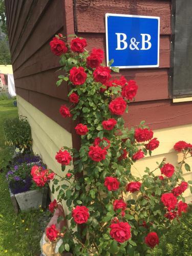 B&B House Austria Photo
