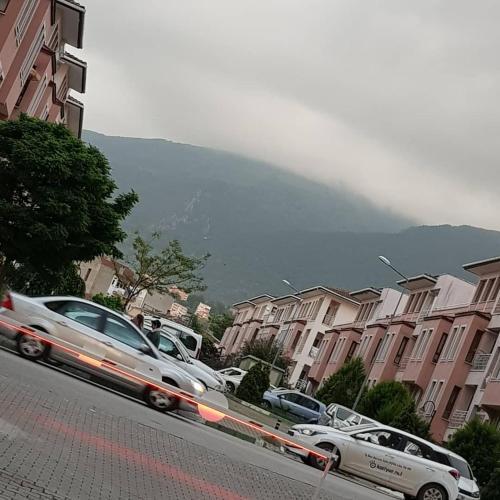 tayaka bursa, Bursa