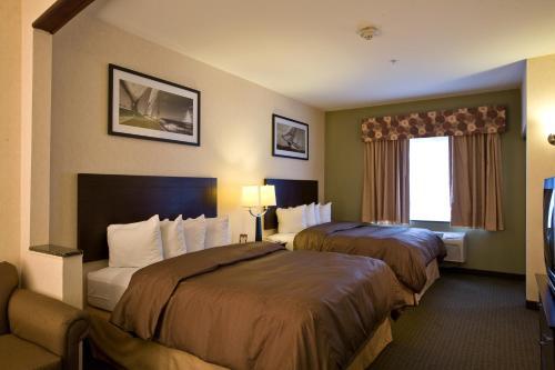 Comfort Suites Elgin Photo