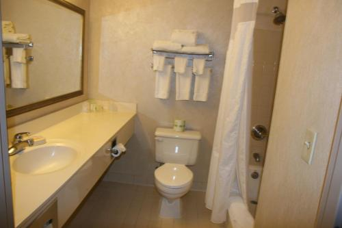 Holiday Inn Budd Lake - Rockaway Area - Budd Lake, NJ 07828