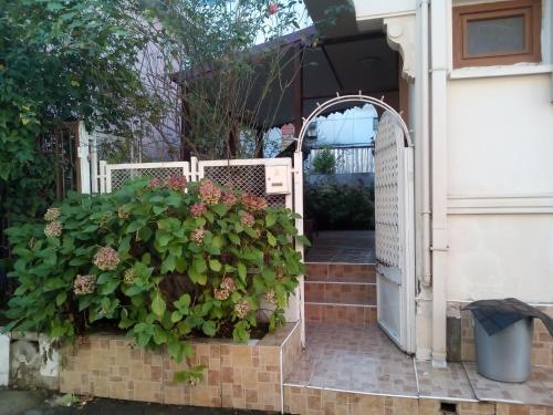 Trabzon Duplex Villa with Garden View in Sogutlu District telefon