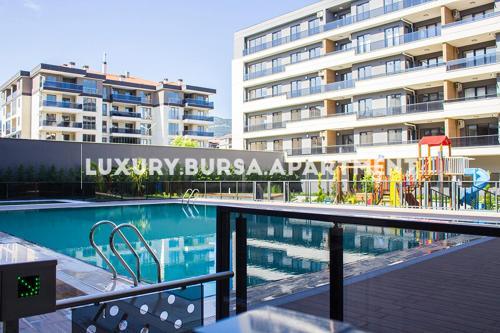 Bursa, Bursa