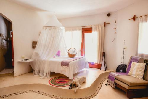 Hotel Casa Takywara Photo