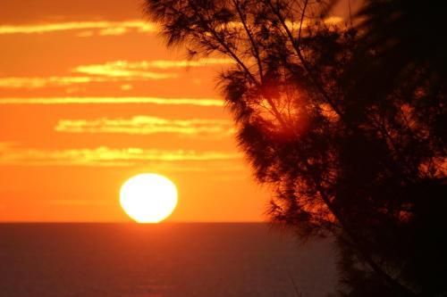 Silver Surf Gulf Beach Resort Photo