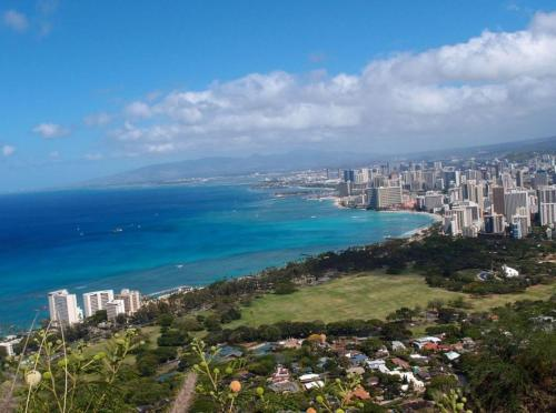 Island Colony Apartment - Honolulu, HI 96815