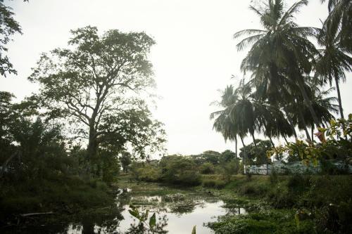 River Point Cabana