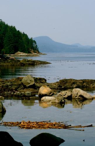 Brown's Bay Resort - Campbell River, BC V9H 1N9