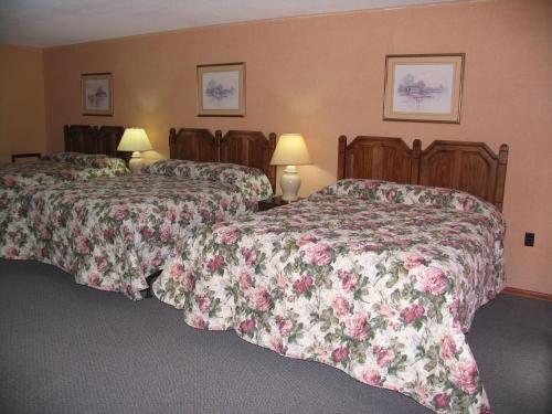 Seven Oakes Motel Photo