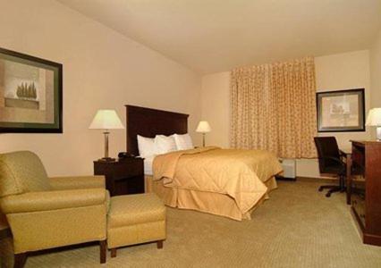 Comfort Inn & Suites Russellville Photo