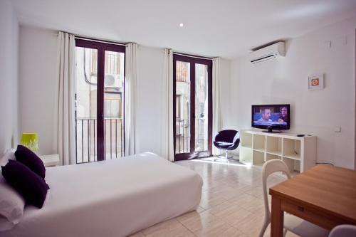 Ramblas Apartments photo 38