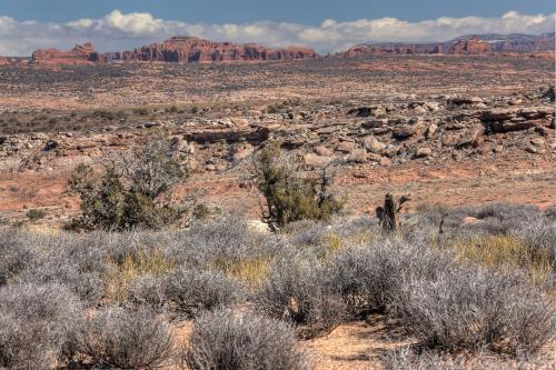 Under Canvas Moab Photo
