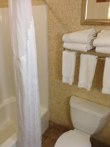 Holiday Inn Express Hotel & Suites Idaho Falls Photo