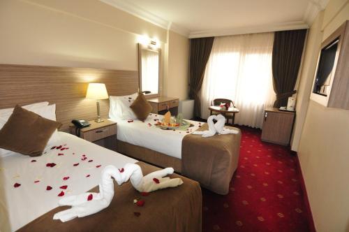 Hotel Buyuk Sahinler, Istanbul