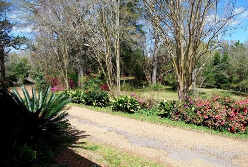 Glenfield Plantation Historic Antebellum Bed And Breakfast - Natchez, MS 39120