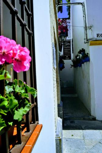Hospederia De El Churrasco
