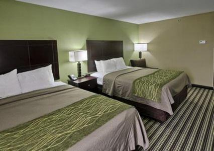 Comfort Inn Alexandria Photo