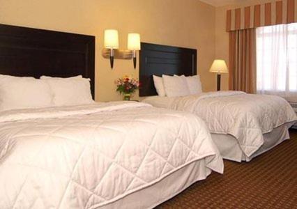 Comfort Inn Roswell Photo