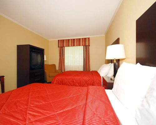 Comfort Inn & Suites Saratoga Springs Photo