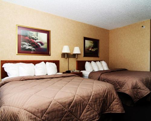 Quality Inn Raton Photo