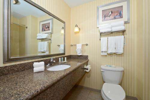 Comfort Suites Amish Country - Lancaster, PA 17602