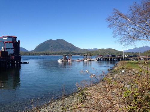 Island Village Properties At Fred Tibbs - Tofino, BC V0R 2Z0