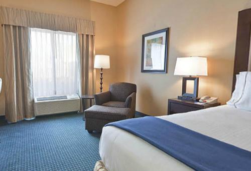 Holiday Inn Express Hotel & Suites Detroit-novi - Novi, MI 48377
