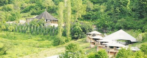 Kocaeli zest 4 lıfe eco camp address