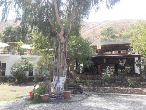 Antalya Sazlık beach hotel kafe bar restoran camping . Karavan kamping ve diving center indirim