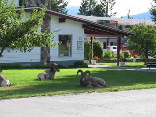 Mountain Springs Motel - Radium Hot Springs, BC V0A 1M0