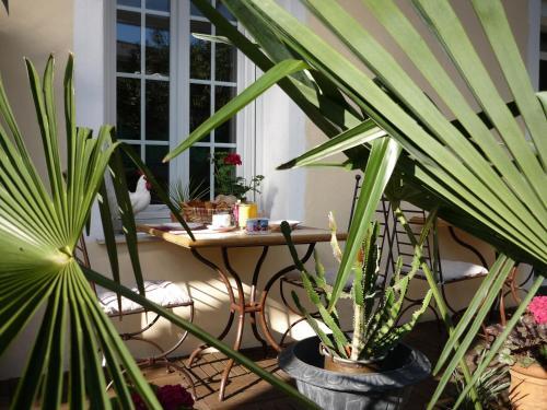 Logis Hôtel Villa Victorine photo 3
