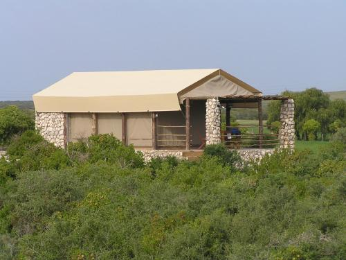 Thali Thali Game Lodge Photo