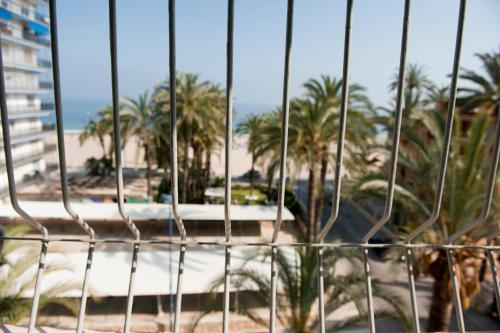 Hotel El Palmeral photo 33