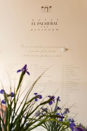 Hotel El Palmeral photo 42